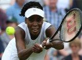 Винус Уильямс вышла в четвертьфинал «Уимблдона» впервые за 6 лет