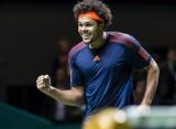 Тсонга стал триумфатором турнира в Роттердаме
