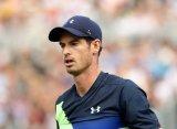 """Энди Маррей: """"Не исключаю, что придется пропустить Wimbledon"""""""