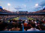 Четыре теннисиста из Топ-10 сыграют на турнире в Вашингтоне