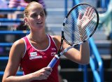 Плишкова сыграет в финале с Уильямс
