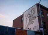 Нью-Йорк раскрасили скетчами с Сереной Уильямс