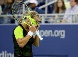 US Open. Плишкова, Веснина и Касаткина идут дальше, Кузнецова покидает турнир