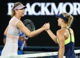 Australian Open. Шарапова уступила Кербер, Халеп с трудом одолела Дэвис