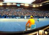 На Australian Open появятся зрительские места прямо на корте