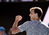 Димитров второй раз в карьере вышел в полуфинал Australian Open