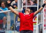 Давид Феррер выиграл титул в Вене